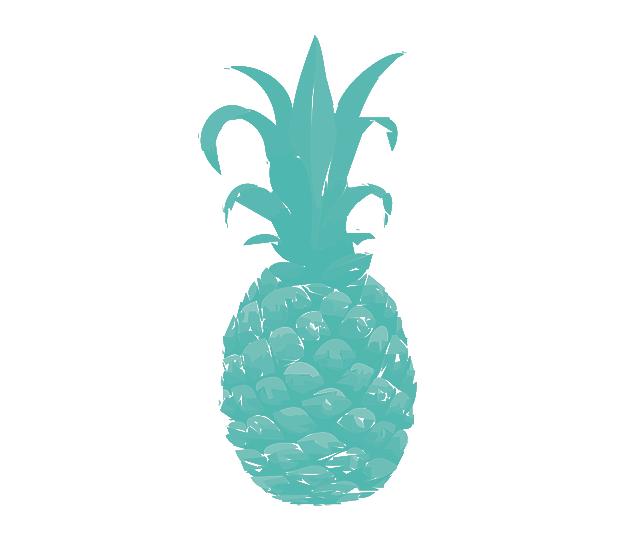 Ananas Credit ananas-credit – le site non-officiel sur l'ananacrédit de dieudonné